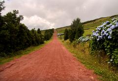 red road in azores - stock photo