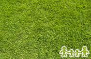 Icon family on green grass,  texture background Stock Illustration