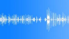 Dog Kennels Sound Effect