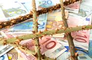 Stock Photo of euro money banknote with thorns