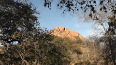 Turkeys Roost at Enchanted Rock SP II Stock Footage