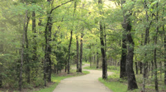 Winding Path at Ray Roberts SP in Texas Stock Footage