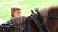 Latino child watches the brown color horse Stock Footage