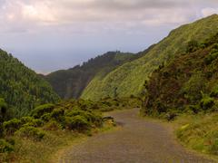 Road in the mountains at azores Stock Photos