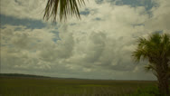 Stock Video Footage of Clouds over marshlands