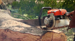 Chainsaw Oiler Stock Footage