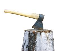 axe and birch log on white - stock photo