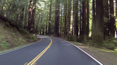 Vacation drive through redwood forest California HD 0172 Stock Footage