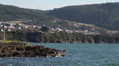 Chile, Chiloe, Coastal Headland Stock Footage