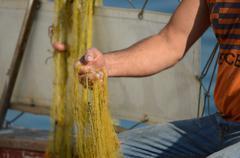 fisherman prepare fishing net - stock photo