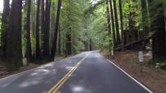 Vacation drive through California Redwood forest pov HD 0182 Stock Footage