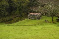 Stock Photo of small house in the top of the portuguese national park