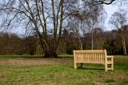 Stock Photo of new wooden park bench on green grass meadow with trees