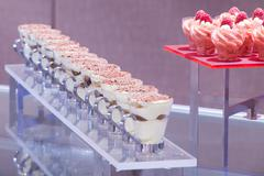 Stock Photo of tiramisu and raspberry sorbet servings
