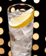 gin tonic or tom collins - stock photo