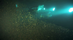 diver behind shoal of bait fish gethered in the wreck - stock footage