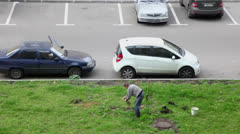 Man plants tree on grass plot near parking with cars Stock Footage