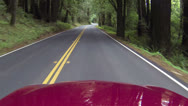 Redwood forest northern California driving right side road POV HD 023 Stock Footage