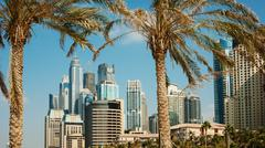 Stock Photo of high rise buildings and palm trees in dubai, uae