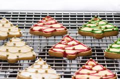 decorated christmas cookies on the backing tray - stock photo