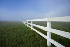 White Fence and Fog Stock Photos