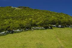 azores landscape at sao miguel island - stock photo