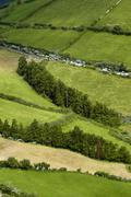 azores fileds at sao miguel island - stock photo