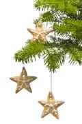 Tree star shape cookies as christmas tree decoration Stock Photos