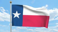 Texas flag Stock Footage