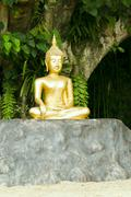 Buddha statue under green tree in meditative posture Stock Photos