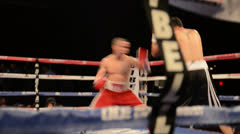 Boxer Attacks Stock Footage