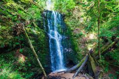 Beautiful waterfall Stock Photos