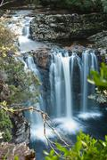 Pencil pine falls, cradle mountain Stock Photos