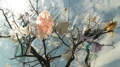 Tree Covered Plastic Bags Near Landfill Stock Footage