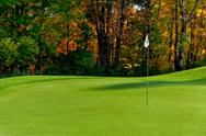 Stock Photo of golf course putting green