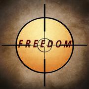 freedom target - stock illustration