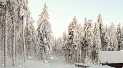 Log cabin in a snow-clad forest in falling snow - stock footage