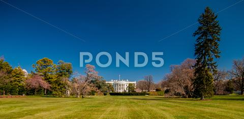 Stock photo of the white house in washington dc with beautiful blue sky