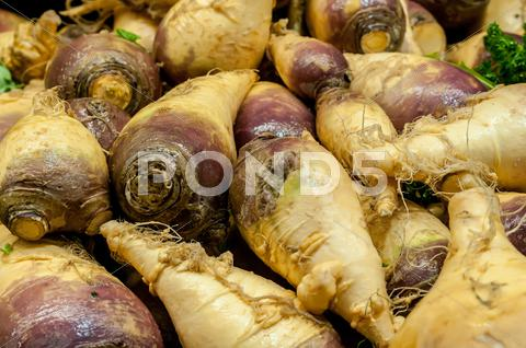 Stock photo of turnip on display at farmers market