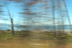 Driving past lake - stock footage