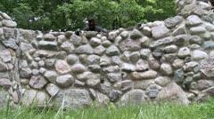 Crooks Jump Wall - stock footage