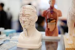Meridians, the nervous system of the human body model, Stock Photos