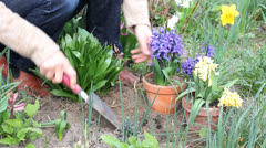 planting - stock footage