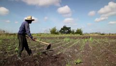 Agriculture and men working in the fields, black peasant at work in farm - stock footage
