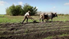 Cuban farmer working in the fields, man with hat tilling soil Stock Footage
