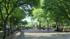 Central Park - stock footage