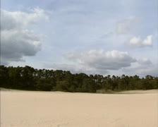 Drift sand area Wekeromse Zand, The Netherlands - pan Stock Footage