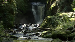 Romantic Forest Waterfall and Creek 01 Stock Footage