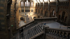 Natural History Museum. London. Stock Footage