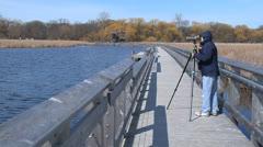 Point Pelee National Park Boardwalk 3 Stock Footage